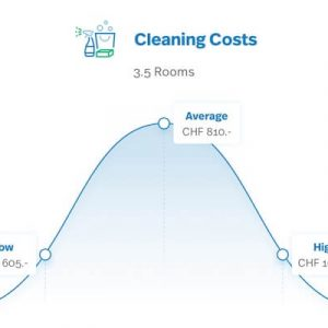 How much does a professional move out cleaning cost?